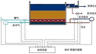 曝气生物滤池特征