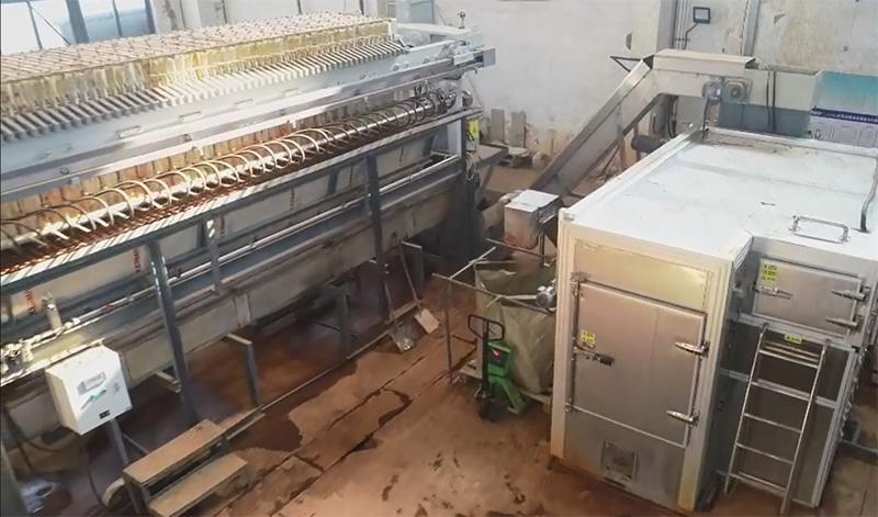 海尔污泥干化现场(带式机)
