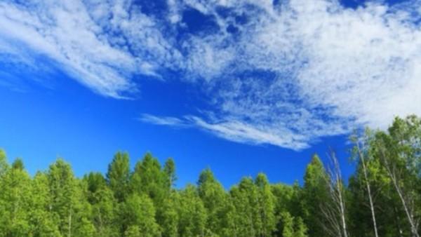 环境部发布2020年大气污染防治工作安排